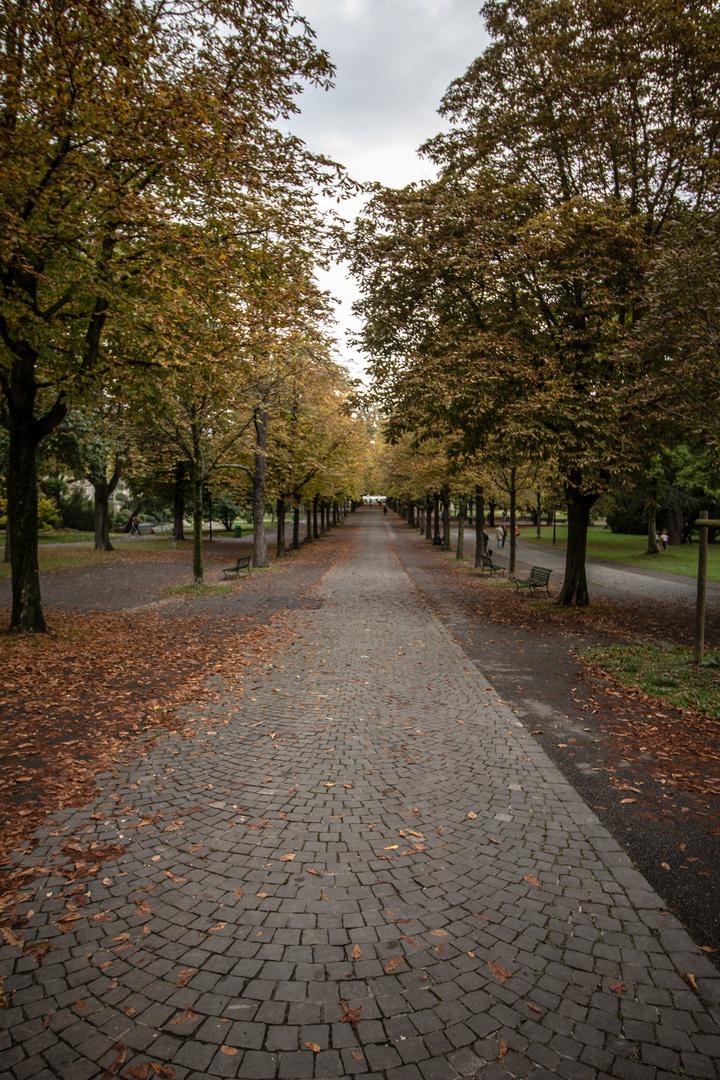 Fall in Parc de Genève