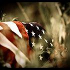 Fallen America