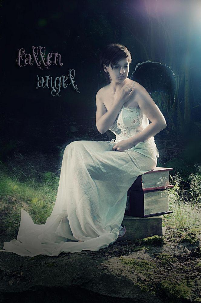 ~fallen angel~