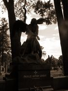 Fallen Angels - Bursted Dreams