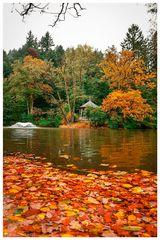[fallen leaves - waldsee - herbst]