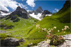 fallenbacher see