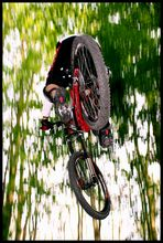 Falling from green heaven...
