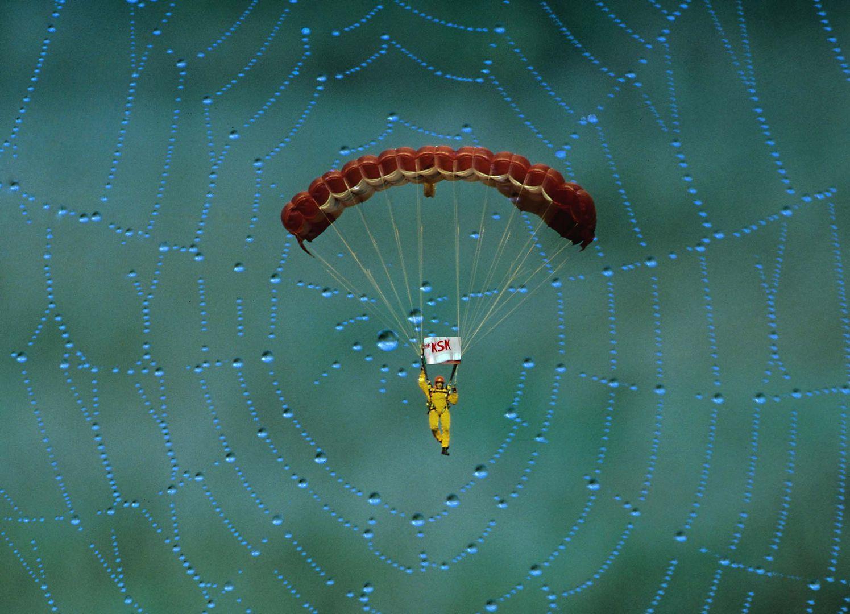 Fallschirmspringer im Spinnetz