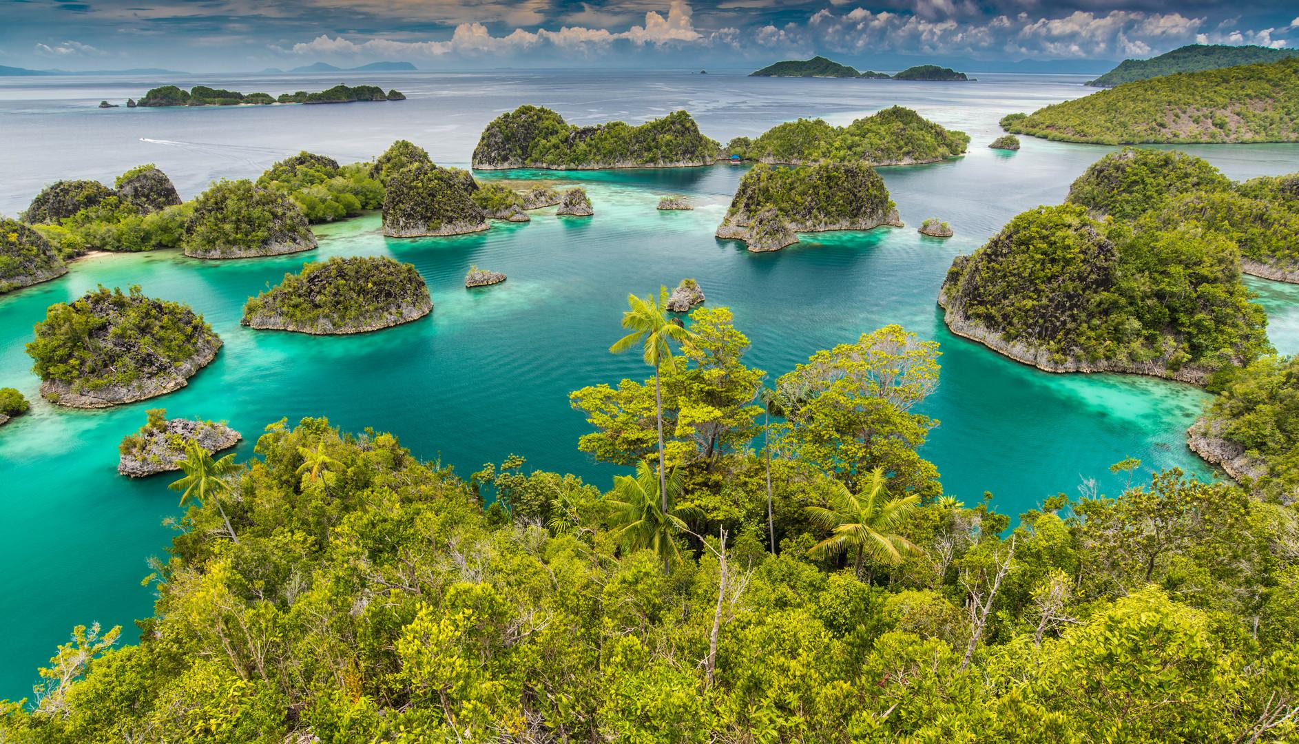 Fam Island - Raja Ampat