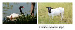 Familie Schwarzkopf