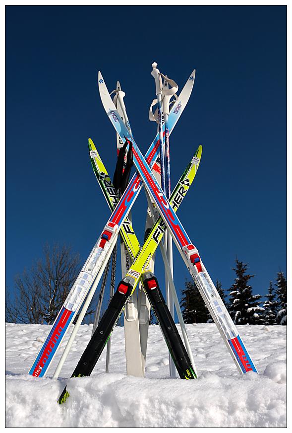 Familienausflug... Ski heil !
