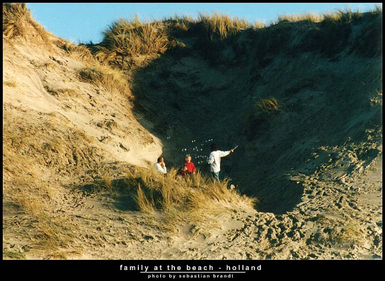 family at the beach - holland series