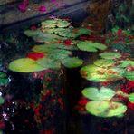 Fantasía en los Jardines del Obispo (Palma de Mallorca)