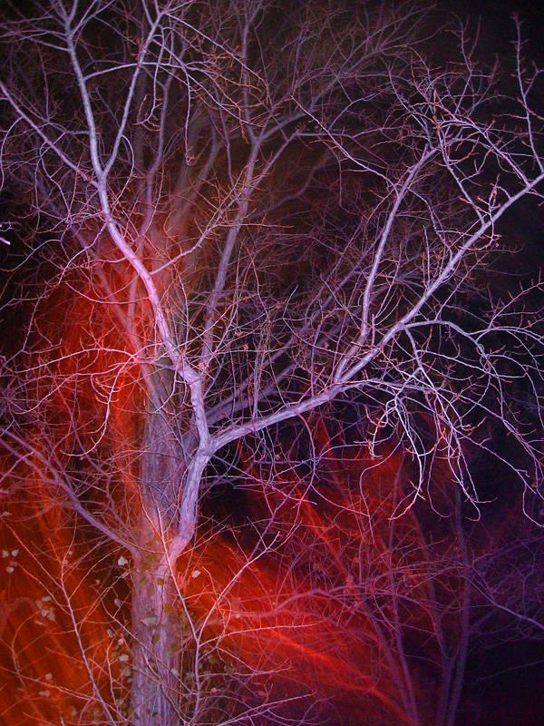 fantasmi di luce