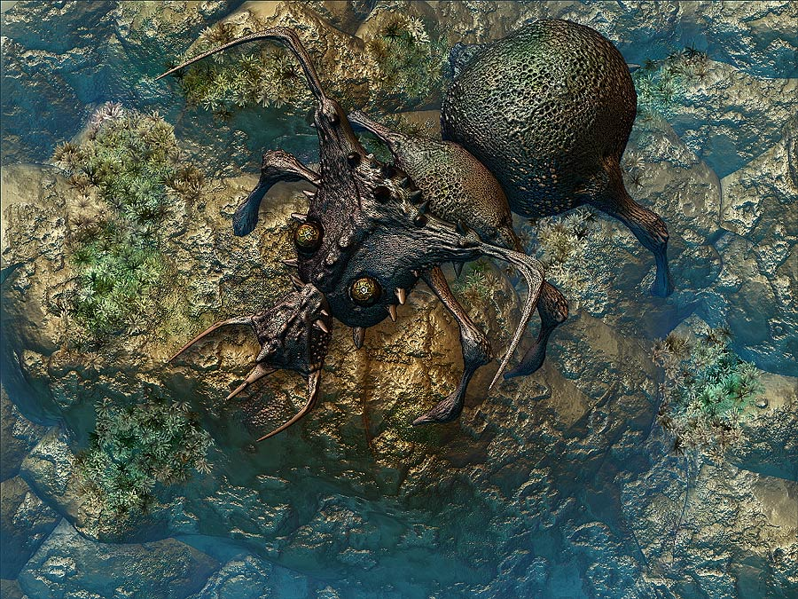 fantasy beetle