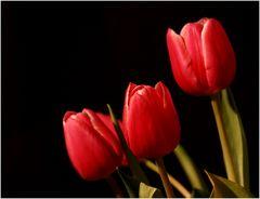 Farbe, Frühling