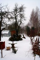 Farbe im Winter