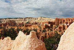 Farben des Bryce - am Navajo Loop Trail