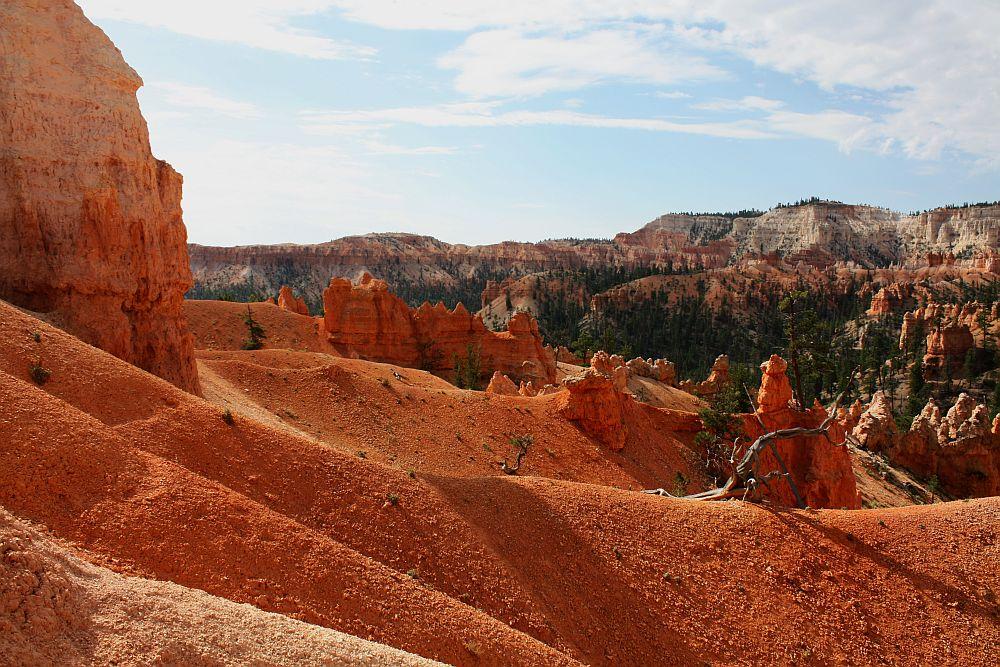 Farben des Bryce - Morgens am Navajo Loop Trail