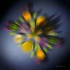 Farben + Explosionen