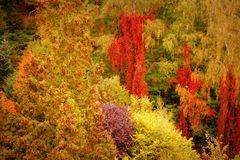 Farben froh bei Regen