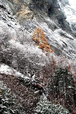 Farben im Winter!
