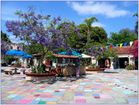 Farben  San Diegos