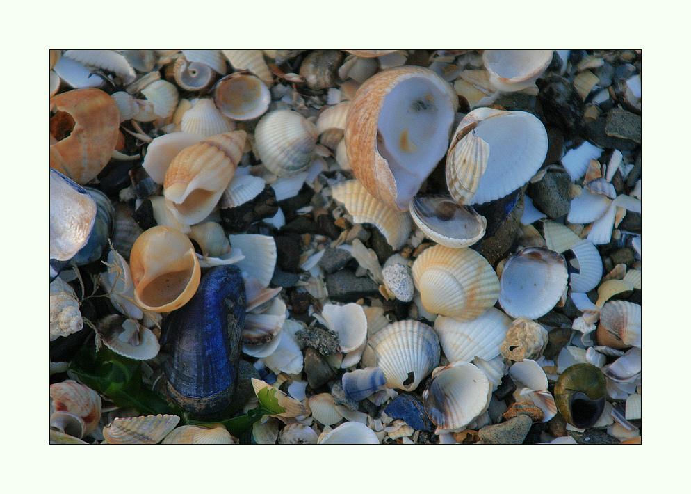 Farben und Formen am Strand...