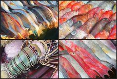 Farbenfroher Fischmarkt