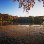 ...farbenfroher Herbst...