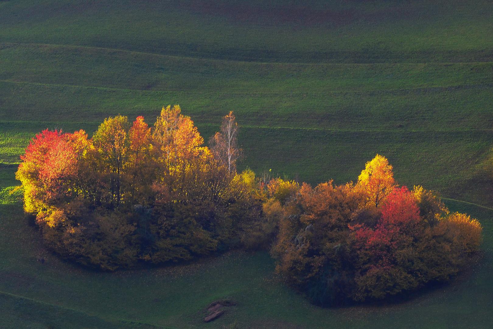 Farbeninseln im Abendlicht