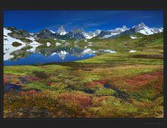 Farbenpracht in den Bergen