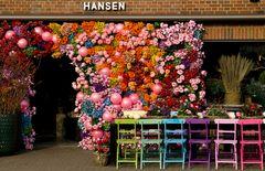 Farbenpracht in Westerland