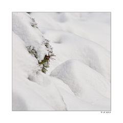 farbiger Schnee ...