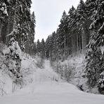 farblose Stille im norddeutschen Mittelgebirge