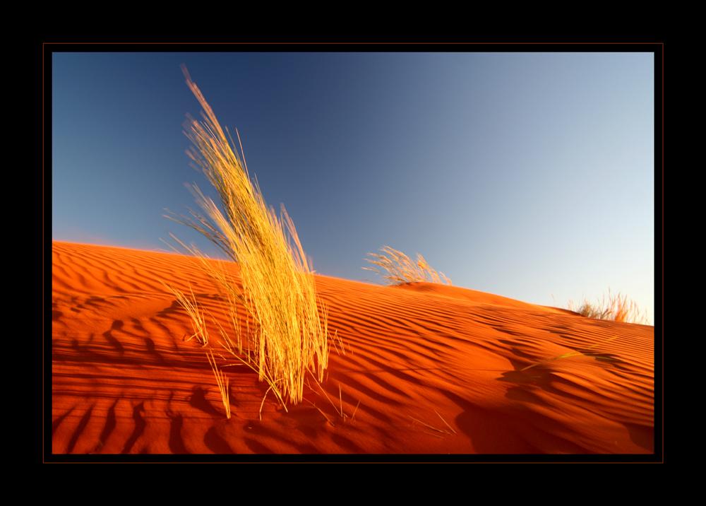 Farbspiel der Namib
