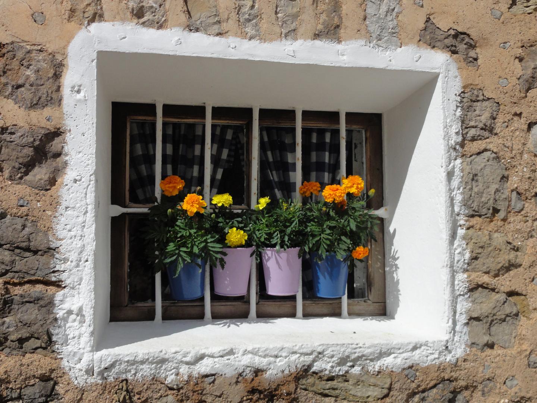 Farbtupfer in Deia (Mallorca)