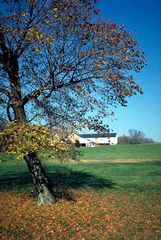 Farm in Pennsylvania