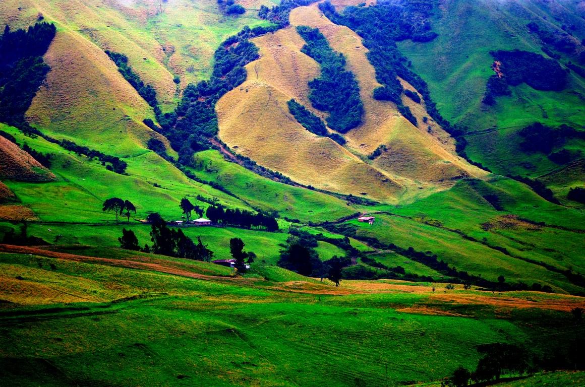 Farms in the high Andes of Colombia