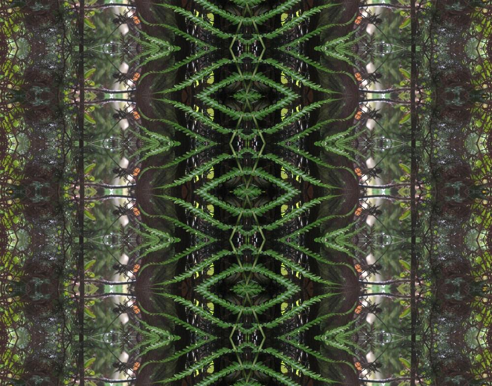 Farnblatt - Kaleidoskop