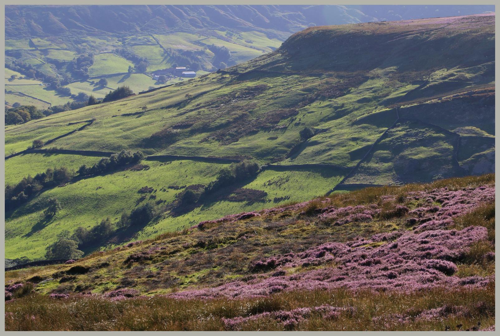 Farndale North Yorkshire 2
