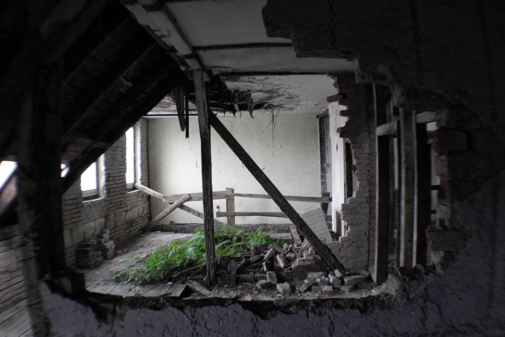 Farnwald im Dachstuhl