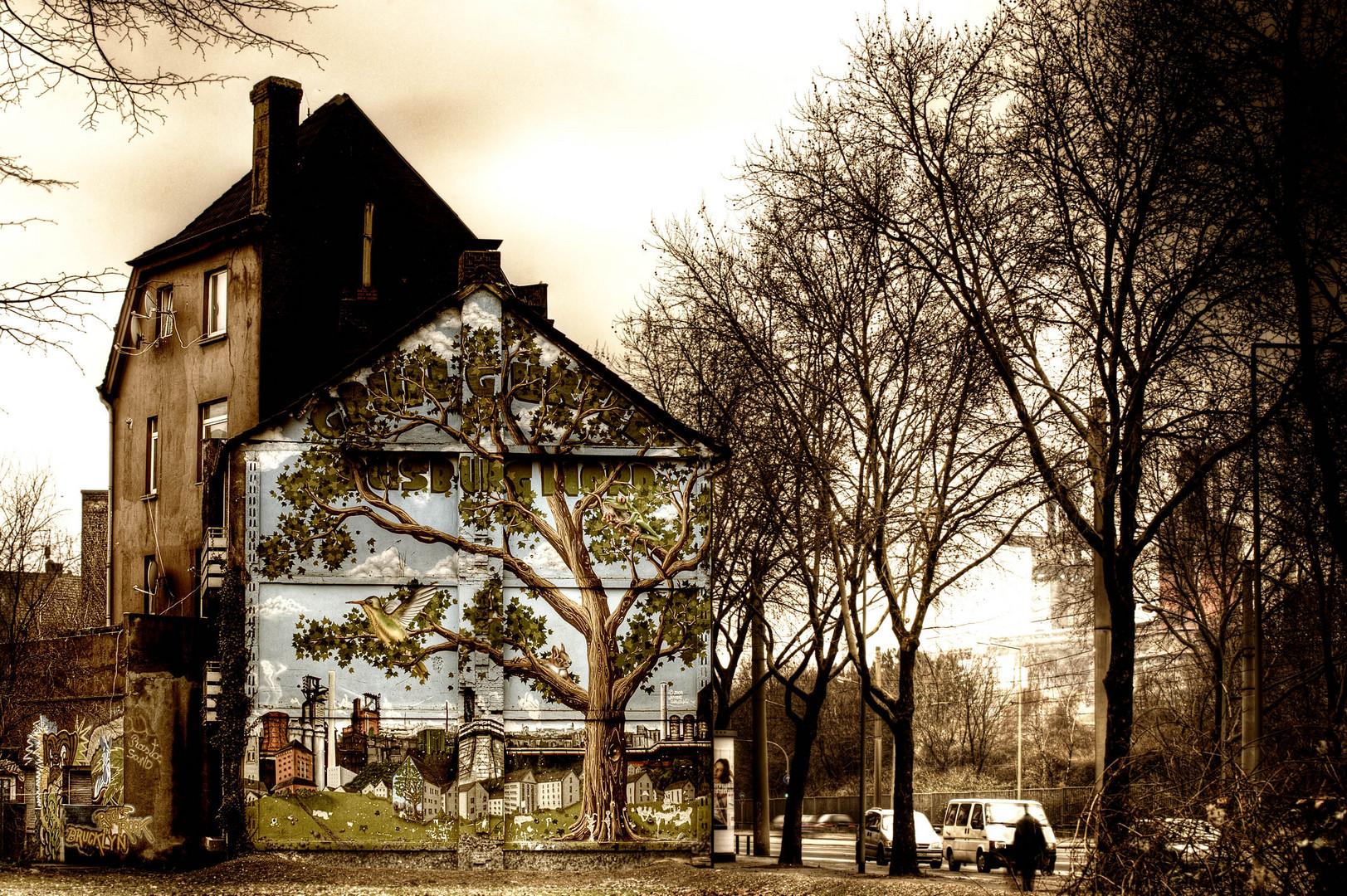 Fassadenbegrünung - Duisburg Bruckhausen 2011