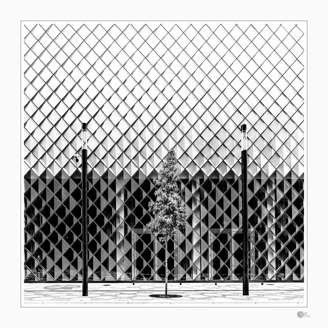 Fassadengrafik #24