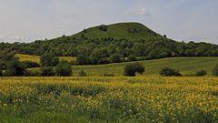 """Fast hätte ich den """"Hochfrühling"""" im Böhmischen Mittelgebirge verpasst..."""