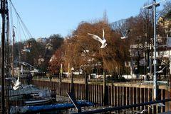 Fast schon Frühling in Hamburgs Museums-Hafen