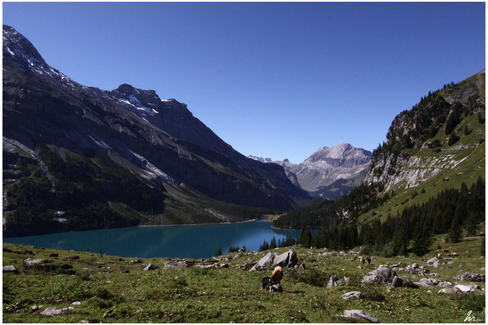 * Faszination Bergsee *