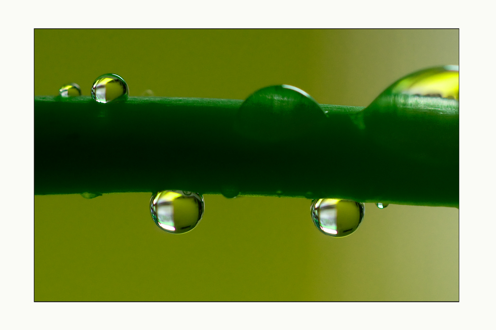 Faszination der Wassertropfen