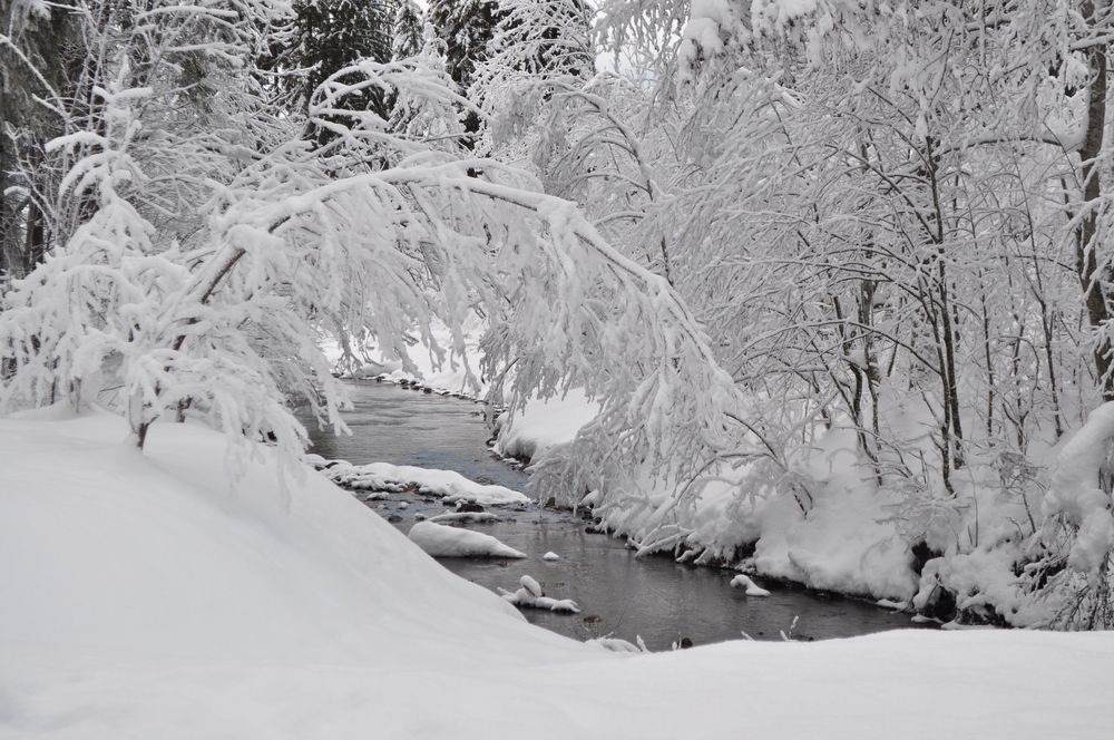 Faszination Winterlandschaft
