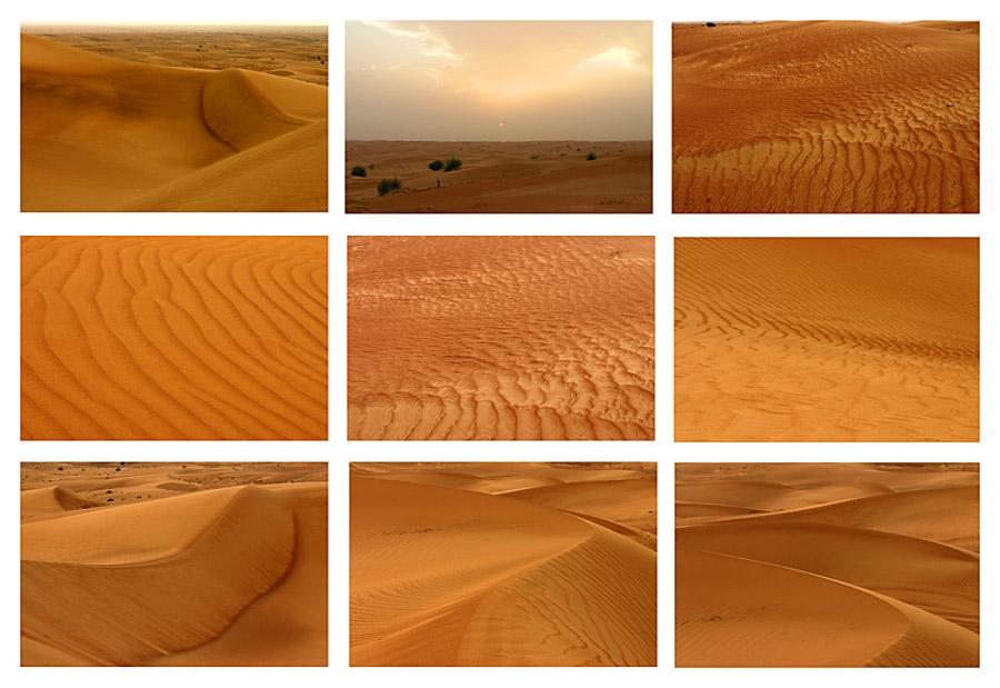 Faszination Wüste