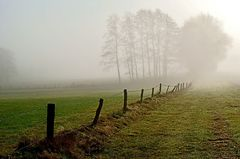 Faszinierende Nebelwelt