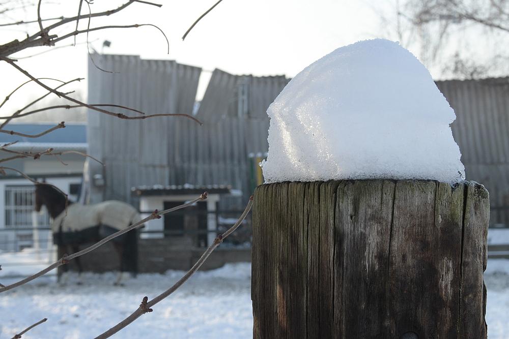 Fatale Schneehaube