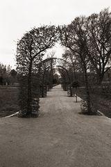- FE2-15 - Rosengarten