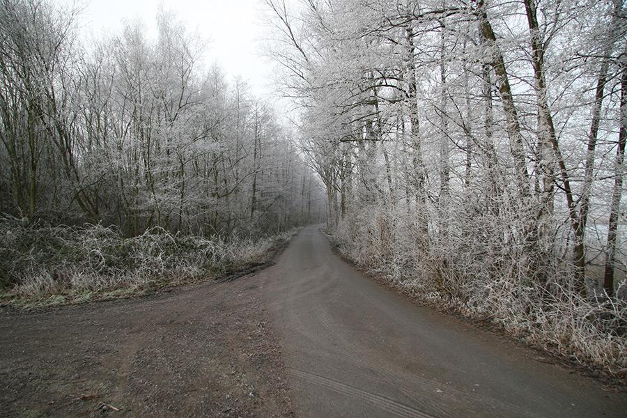 Februar 2007